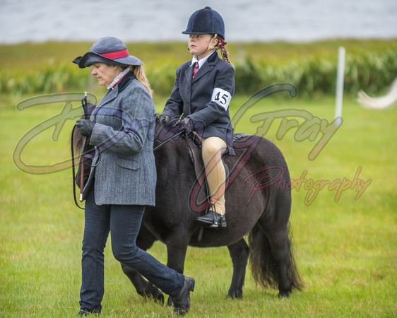Shetland Horse and Pony Event 2018